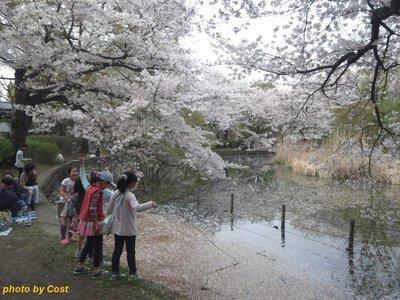 20110410zenpukuji3b.jpg