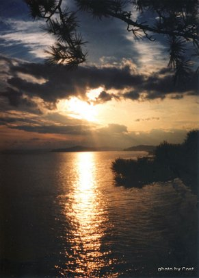 桂浜2B.jpg