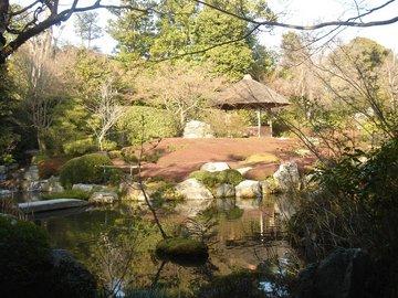 妙心寺退蔵院11b.jpg
