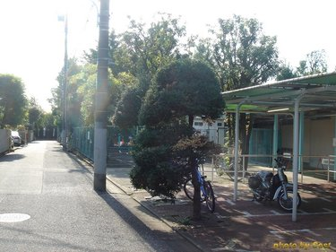 和田堀公園プール0905A.jpg