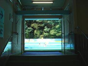 和田堀公園プール2.jpg
