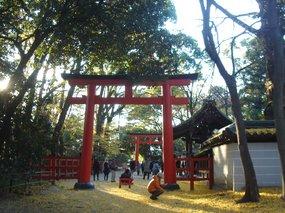 糺の森、河合神社1.jpg
