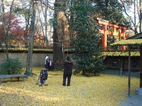 糺の森、河合神社2.jpg