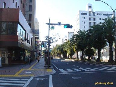 kochi20100104.jpg