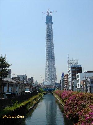 sky-tower.jpg