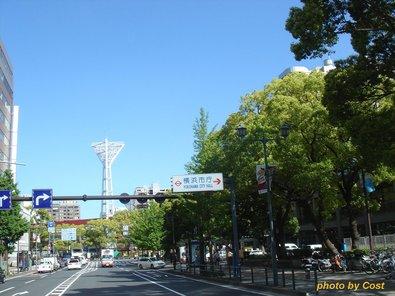yokohama2010.jpg